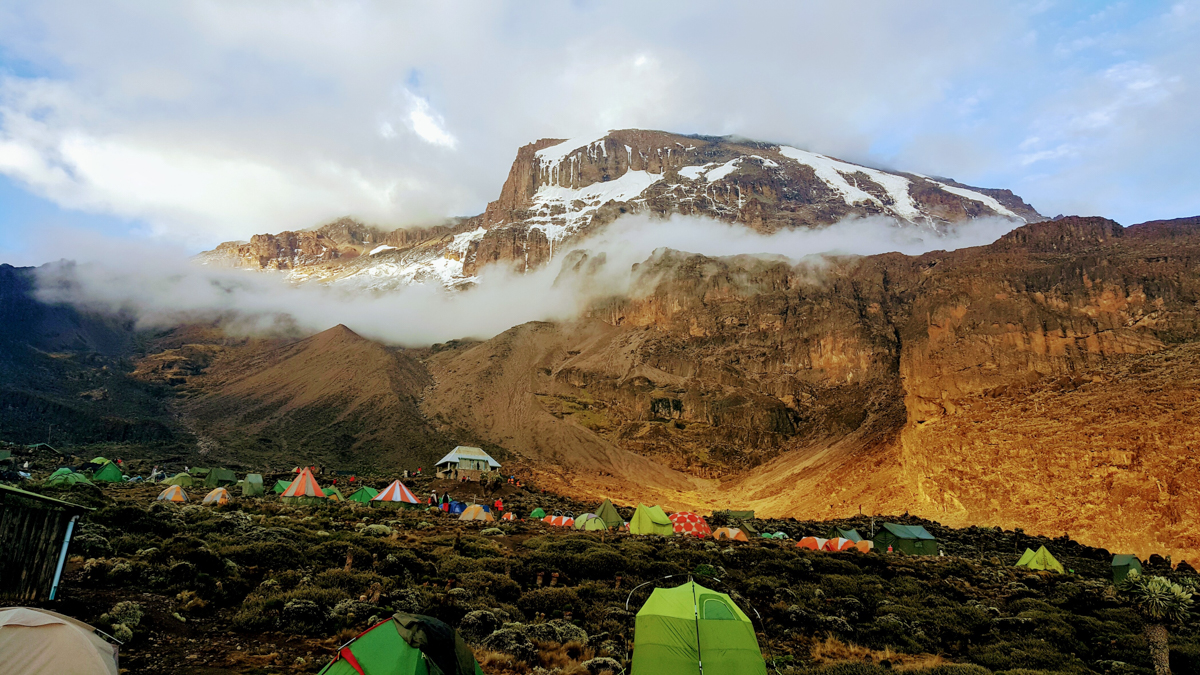 Bellezas de kilimanjaro