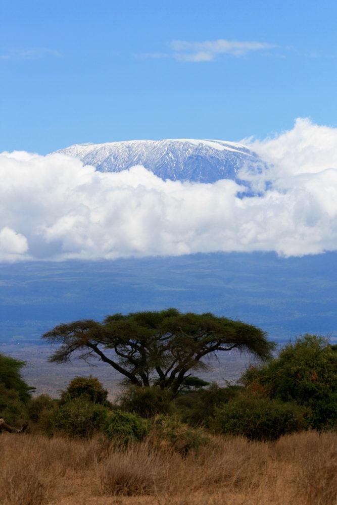 paisaje de kilimanjaro