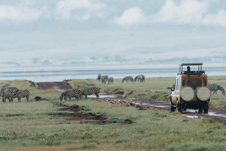 Agencia viajes Safari Tanzania