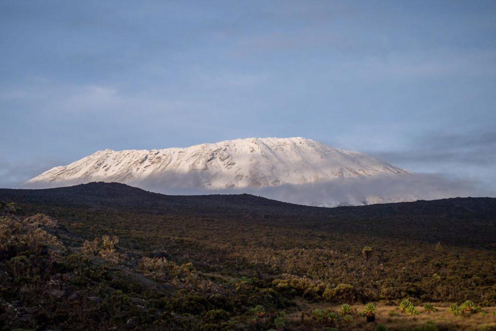 Lemosho kilimanjaro Agencia de viajes Africaatumedida