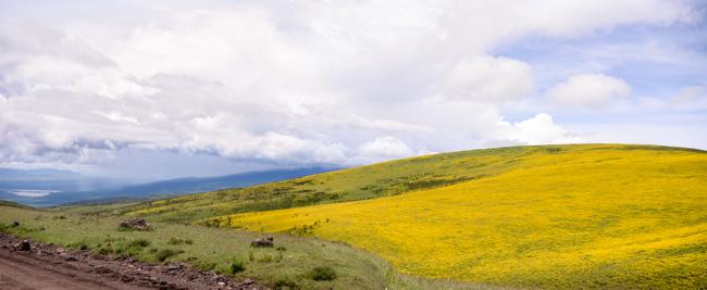 Ngorongoro - agencia de viajes - Africaatumedida