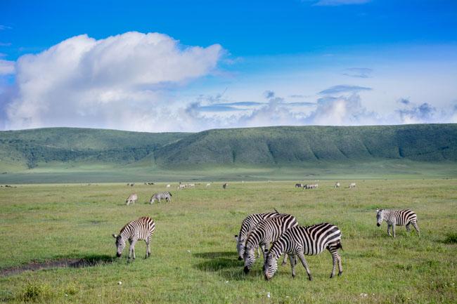 Paisaje - Ngorongoro - Africaatumedida