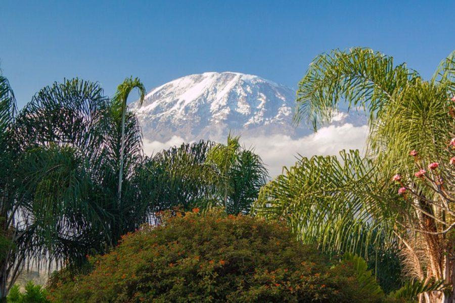 Como escalar Monte Kilimanjaro en Tanzania barato