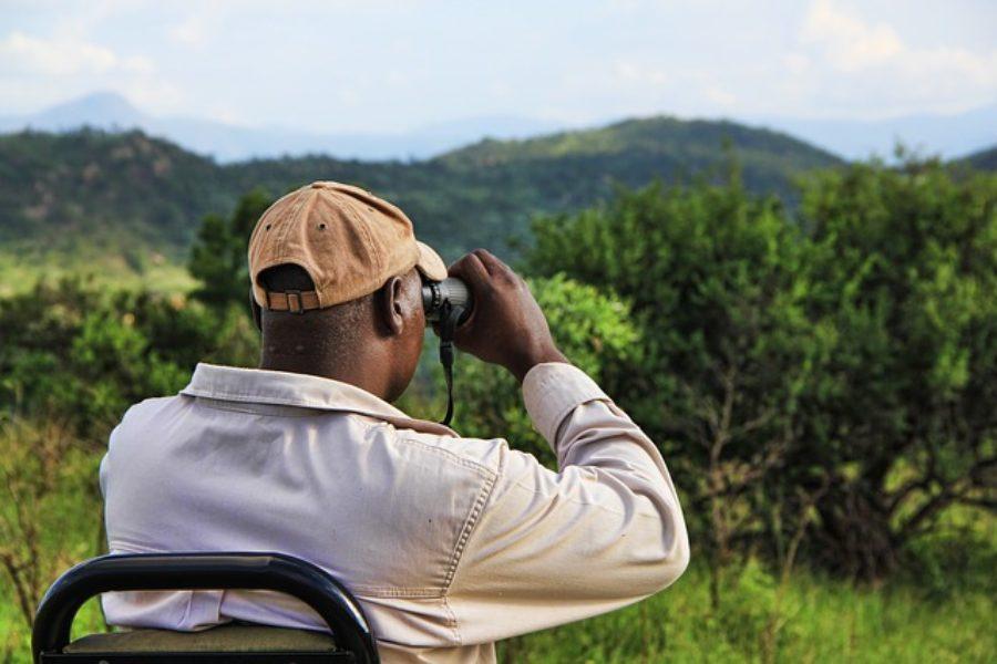 Que ropa llevar para ir a un Safari en Africa