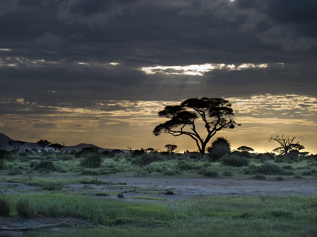 Lluvia en Tanzania