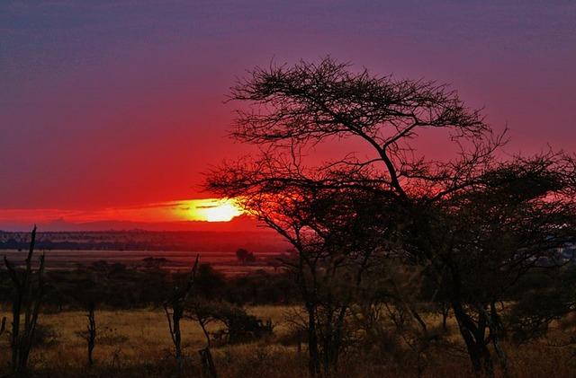 puesta de sol tanzania